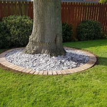 Decoration added around a tree for a customer in Barnsley